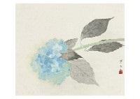 summer by hoshun yamaguchi