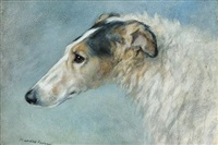 a borzoi by frances c. fairman