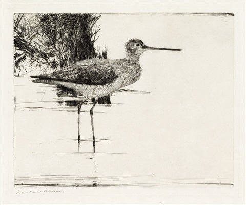 yellowlegs no 4 by frank weston benson