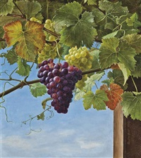 the grapevine by ida marie margrethe heerfordt