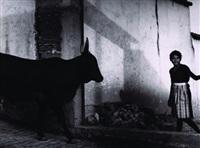 la doncella y el toro by mariana yampolsky