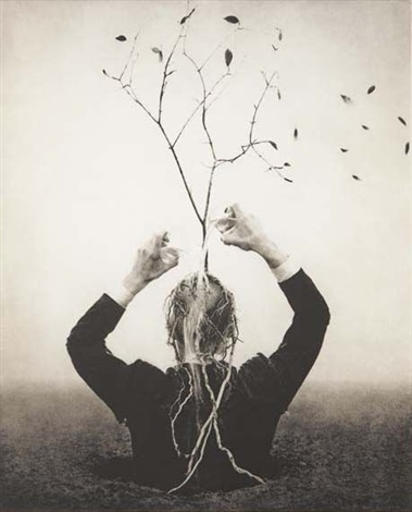 the source by robert shana parkeharrison