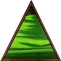green 5 by daniele fissore