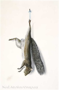 nature morte: squirrel by george luis viavant