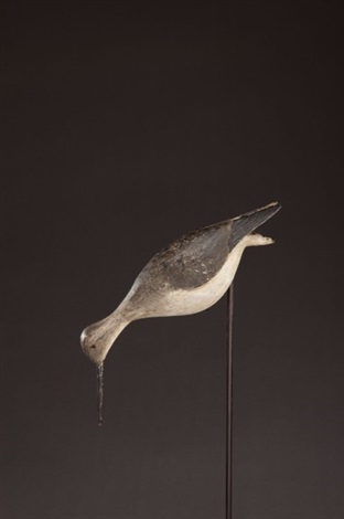 shorebird by elisha jr burr