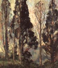 the cedars by gertrude freyman