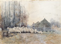 sheep in a farmyard by william edwin atkinson
