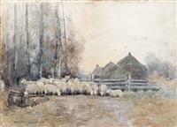 sheep in a farmyard by william edwin atkinson