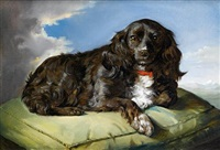 a spaniel on a green cushion by theodor petter