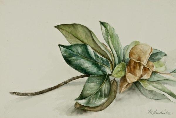 magnolia by barkley l hendricks