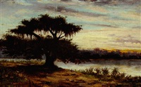 oak tree on the bayou, at dusk by alphonse j. gamotis