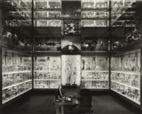 crystal palace, hunterian museum, london by matthew pillsbury