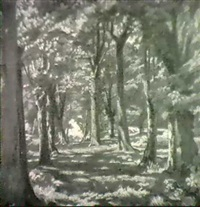 sunlight through beech trees by edwin harold glasbey
