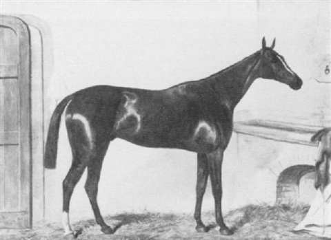 the bay racehorse thormanby in a stall by thomas hillier mew