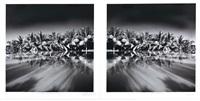 palms & infinity pools (diptych) by chris simpson