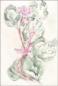 kukkia by aimo kanerva