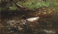 the first swim by willem maris