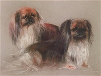 pekingese (pair) by carolyn alexander