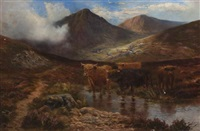 scottish highlands cows by douglas cameron