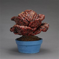 early spring red cabbage by victor cicansky