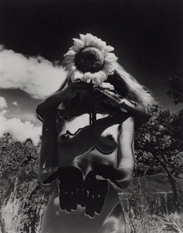 sunflower song solarisation by eikoh hosoe
