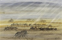 blue wildebeest in a rain shower by gordon vorster