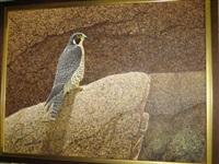 falcon by hans j. peeters