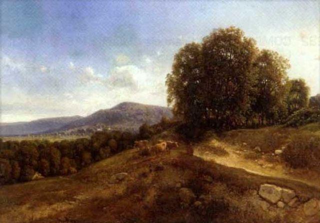 vaches sur les collines by jean alexis achard