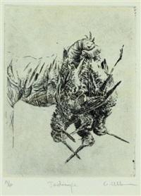 jacksnipe by gordon allen