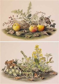 primroses and ferns (+ apples and bramble; pair) by elizabeth mcewen