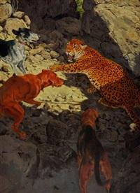 jaguar by douglas allen