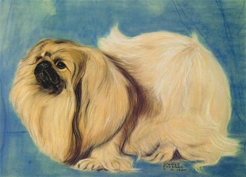 pekingese by gladys emerson cook