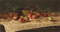 still life with apples by william hubacek