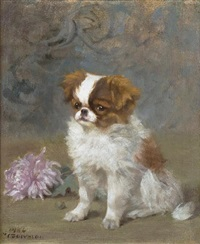 an english toy spaniel puppy by frances c. fairman