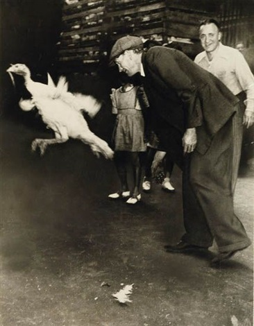 chasing a turkey by weegee