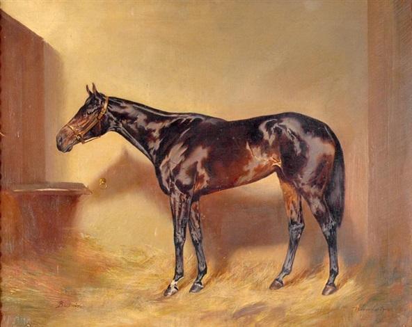 stud horse beduin by ignaz konrad