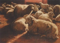 sheep in a barn by lino casimiro iborra