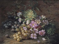 purple primulas with grapes by margaretha roosenboom