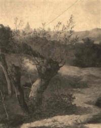 vista de madrid by francisco amallo y manget