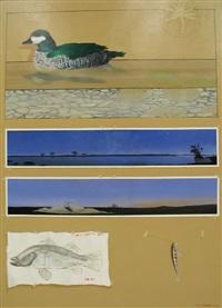 waterlily by graeme k. townsend