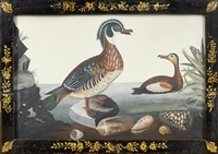 a male and female oriental merganser on a pond in basso relievo in an original floral and trellis black and gilt japanned frame by samuel dixon