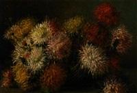 still life of crysanthemums by licinio barzanti