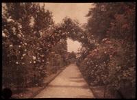 paysages, jardins, intérieurs (14 works) by jules gervais courtellement