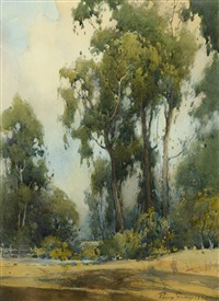 eucalyptus grove, monterey by percy gray