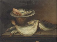 still life of fish on a table by elena recco