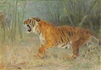 tigre rugissant dans la jungle et cortège d'éléphants à l'arrière-plan (study) by cuthbert edmund swan