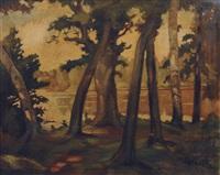 pond in a wood by friedrich moritz