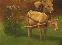 a study of cows in a field by simon ludvig ditlev simonsen