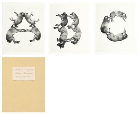 letters numbers punctuation portfolio of 44 by william wegman