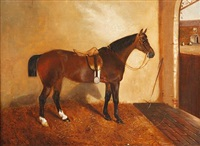 saddled bay hunter in a stable (+ another; pair) by j. c. partridge